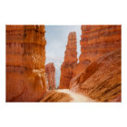 Bryce Canyon National Park Trail Poster