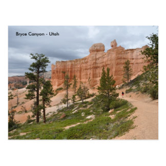 Bryce Canyon National Park Trail - Utah Postcard