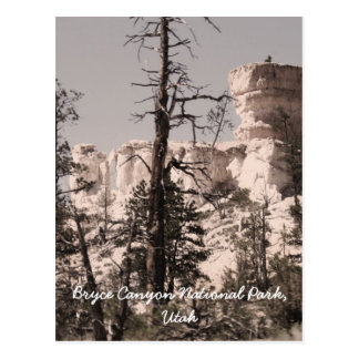 Bryce Canyon National Park, Utah Postcard