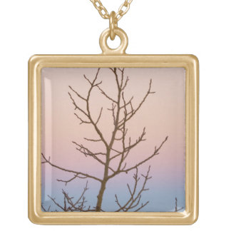 Bryce Canyon, Utah. Bare tree in front of sunset Gold Plated Necklace