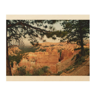 Bryce Canyon Veiw Wood Print