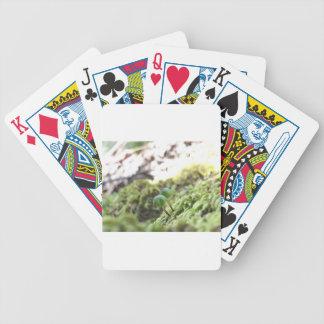 Bryophyta Umbrellas Bicycle Playing Cards