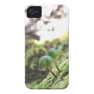 Bryophyta Umbrellas Case-Mate iPhone 4 Case