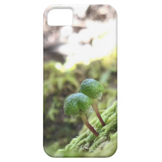Bryophyta Umbrellas iPhone 5 Covers