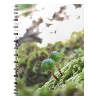 Bryophyta Umbrellas Spiral Notebook
