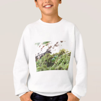 Bryophyta Umbrellas Sweatshirt