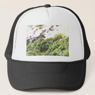 Bryophyta Umbrellas Trucker Hat