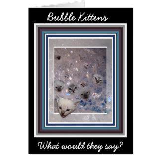 Bubble Kittens card