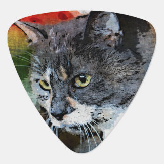BUBBLES INTENTLY FOCUSED GUITAR PICK