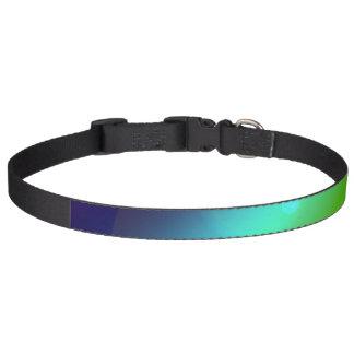 Bubbly Rainbow Pet Collar
