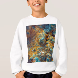 Bubbly Turquoise with Rusty Dust Sweatshirt