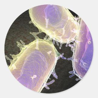 Bubonic Plague Round Sticker