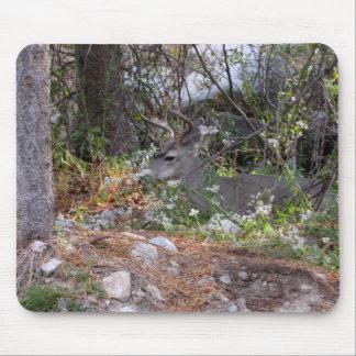 Buck Camouflage Deer Mousepad