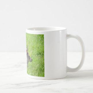 Buck fallow deer in grass coffee mug