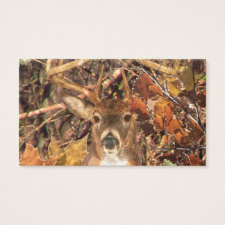 Buck in Camo White Tail Deer Business Card