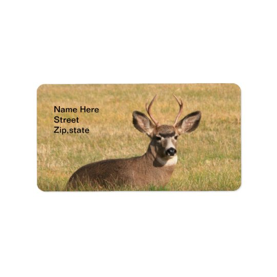 Buck In The Grass Address Label