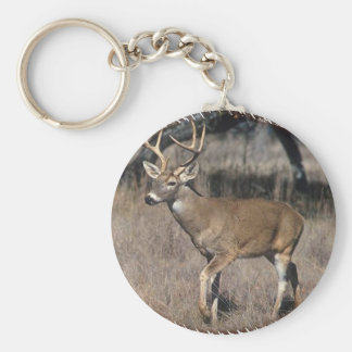 Buck Keychain