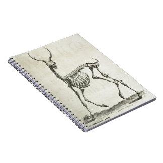 Buck Skeleton Notebook