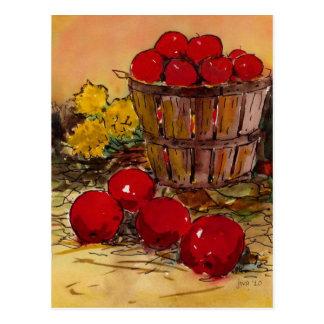 bucket of apples postcard