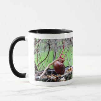 Buckeye Tree Sprout Mug