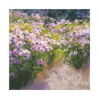 Buckhorn Aster Show Canvas Print