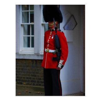 Buckingham Palace Guard Postcard