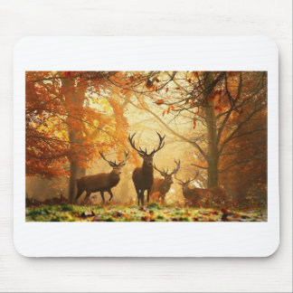Bucks with Antlers Running Through Autumn Forest Mouse Pad