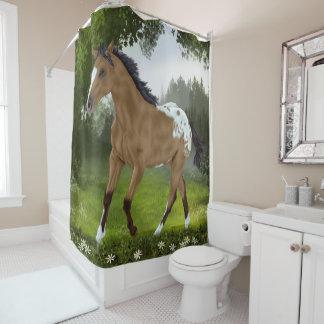 Buckskin Appaloosa Horse