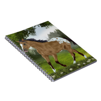 Buckskin Appaloosa Horse Note Books