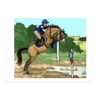 """Buckskin Horse Art """"Don't get toes wet"""" Postcard"""