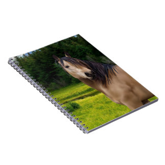 Buckskin Horse Art Print Note Books