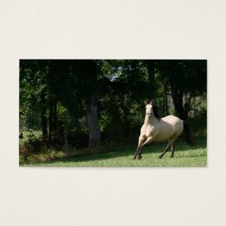 buckskin horse business card 2