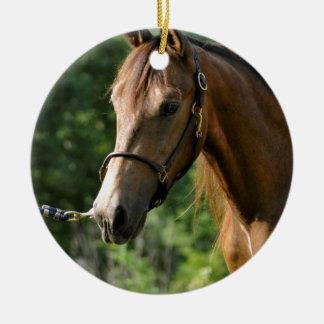 Buckskin Morgan Horse Ceramic Ornament