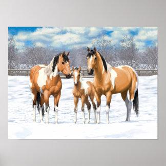Buckskin Paint Horses In Snow Poster