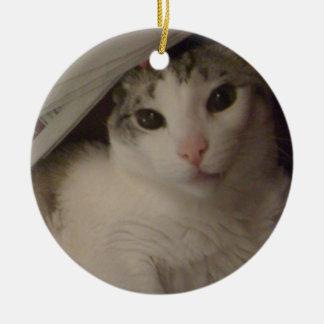 Bucky the cat ornament