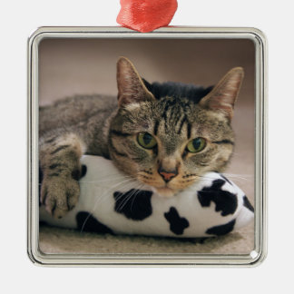 Bud & His Kickaroo Silver-Colored Square Ornament