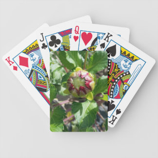 bud in autumn bicycle playing cards