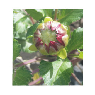 bud in autumn notepad