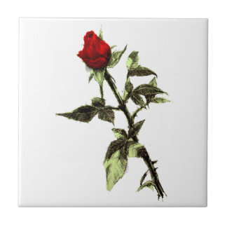 Bud of the red rose tile