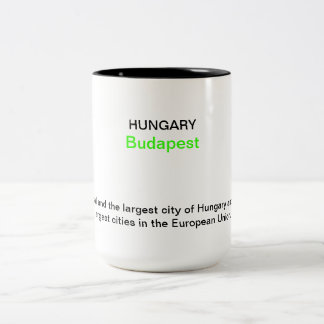 Budapest 2013n Two-Tone coffee mug