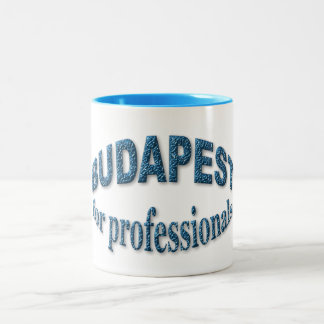 Budapest for Professionals Two-Tone Coffee Mug