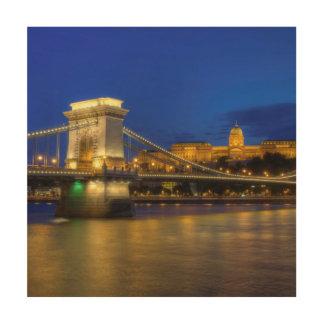 Budapest, Hungary Wood Canvas