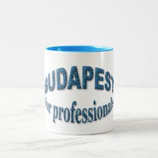Budapest pour des professionnels mug bicolore