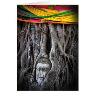 Buddha And The Tree Buddhism Thailand Photography Card