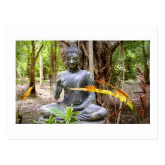 BUDDHA   Buddhism  Peace Postcard