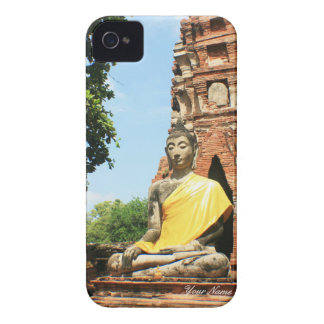 Buddha Case
