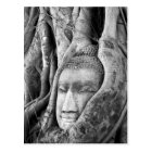 Buddha in a Tree Postcard
