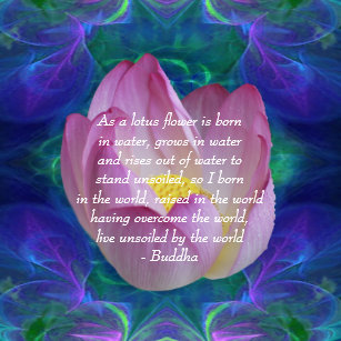 Lotus Flower Quote Gifts On Zazzle Ca
