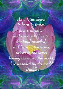 Lotus Flower Quote Invitations Stationery Zazzle Ca