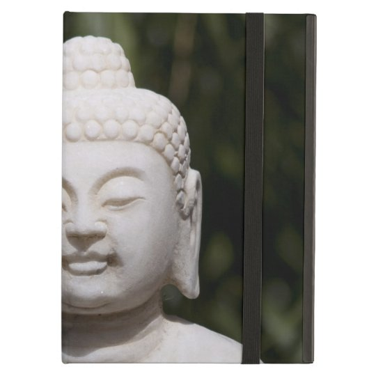 Buddha Statue iPad Air Covers